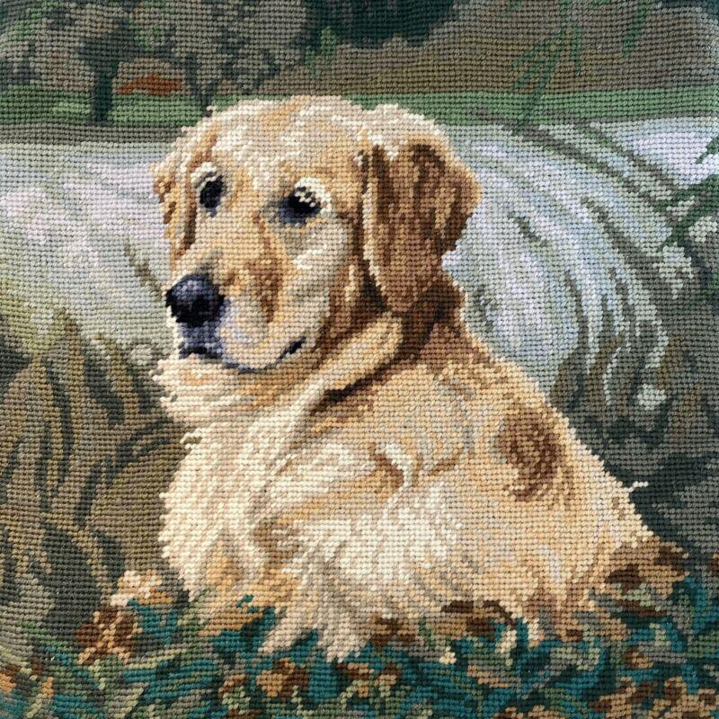 Golden Yellow Lab Retriever Dog Needlepoint Pillowcase Velveteen Back w/Zipper