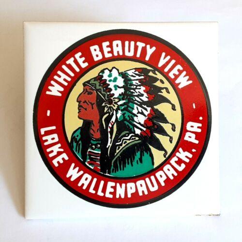 Vintage! Penn Poconos LAKE WALLENPAUPACK White Beauty View 4.25 Tile! FREE S/H!