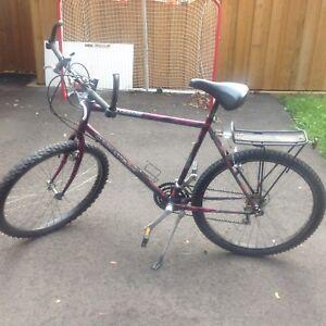 Bike Dynatech