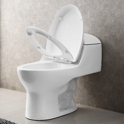 White Compact Dual Flush Elongated One Piece Toilet Comfort Seat Ceramic Modern (Compact Flush)
