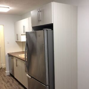 Must See Renovated top to toe 2 Bed Suites  insuite Laundry Kitchener / Waterloo Kitchener Area image 9