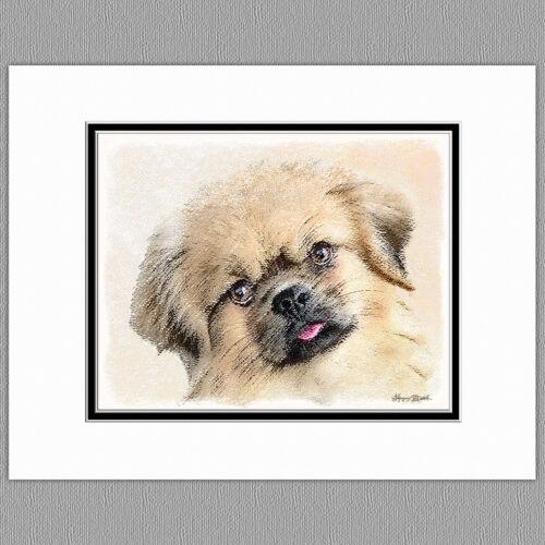 Tibetan Spaniel Dog Original Art Print 8x10 Matted to 11x14
