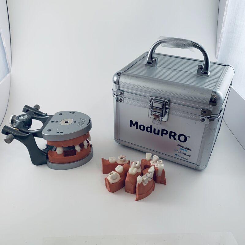 Acadental ModuPRO Typodont - Endo Endodontics Carrier Tray Modules MP_E120_PC