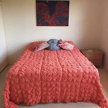 Share house room available for professional female Inverell Inverell Area Preview