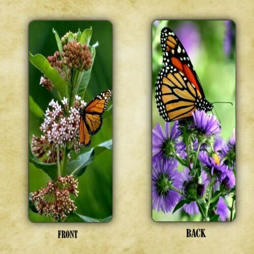 BOOKMARK MONARCH BUTTERFLY BEAUTIFUL COLORFUL LAMINATED