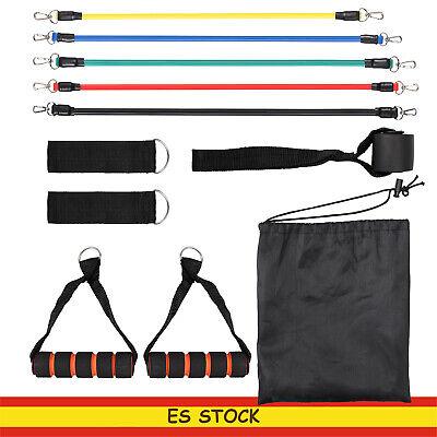 5x  bandas de resistencia  elasticas para entrenamiento de fuerza / movilidad