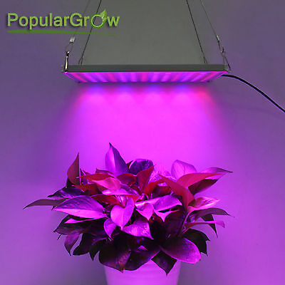 45W LED Grow Light Red Blue Lamp For Indoor GardenHydroponic System Plant Flower
