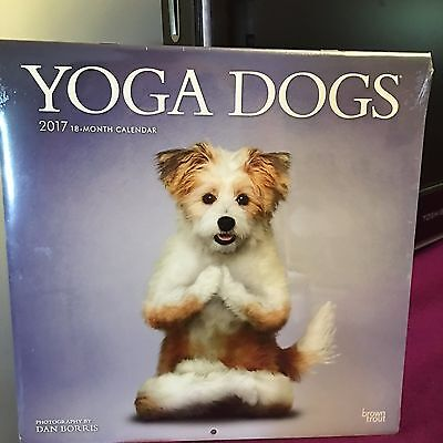 Yoga Dogs 2017 Wall Calendar 18 Months New Sealed Free S H