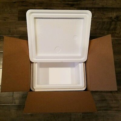 Styrofoam Insulated Cooler With Shipping Box Ext Meas 15.5l X 13.5w X 12.5h