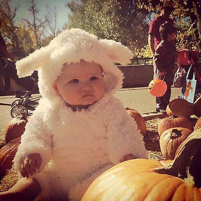NWT/NEW POTTERY BARN KIDS BABY LAMB SHEEP HALLOWEEN COSTUME 12-18 MONTHS WHITE - Kids Sheep Costumes