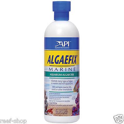 Algae Fix Marine (API Algaefix Marine 16oz Reef Safe Algaecide Fast Free USA Shipping )