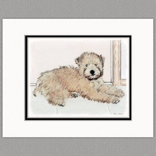 Soft Coated Wheaten Terrier Original Print 8x10 Matted to 11x14