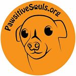 Pawsitive Souls