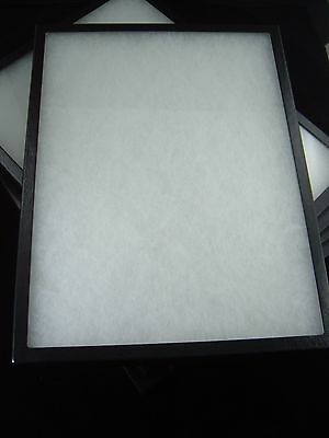 Two Jewelry Display Case Riker Mount Display Box Collectors Box 12 X 16 X 78