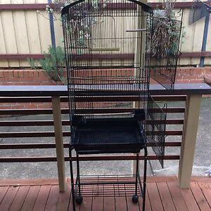 Bird cage Parramatta Parramatta Area Preview