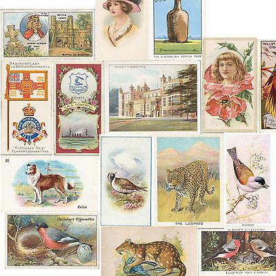 2,900 Vintage Cigarette Cigar Card Beauties, Badges, Birds 1880s Ads {jpg DVD #2