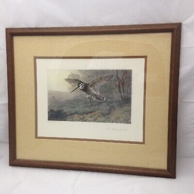 Framed Archibald Thorburn Lithograph, 'A Labour of Love', Birds, Wildlife, Color