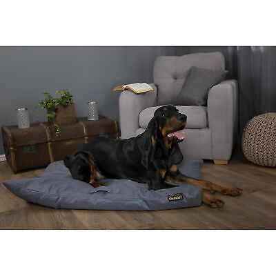 Scruffs Expedition Memory Foam Dog Pet Pillow (Large) - Blue