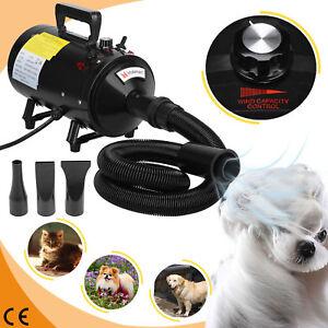 2800W Dog Cat Pet Dryer Grooming Hair Stepless Speed Blaster Blower Heater Black