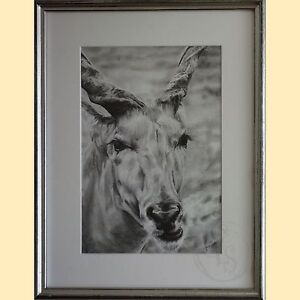 PROFESSIONALLY FRAMED FINE ART DRAWING Kardinya Melville Area Preview