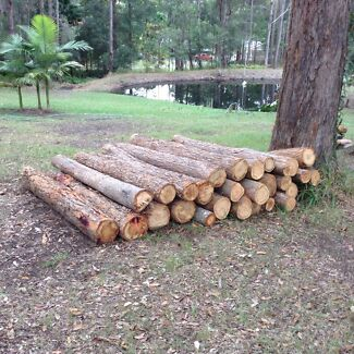 Fence posts Tanawha Maroochydore Area Preview