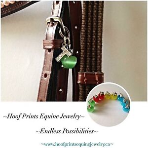Bridle Charms