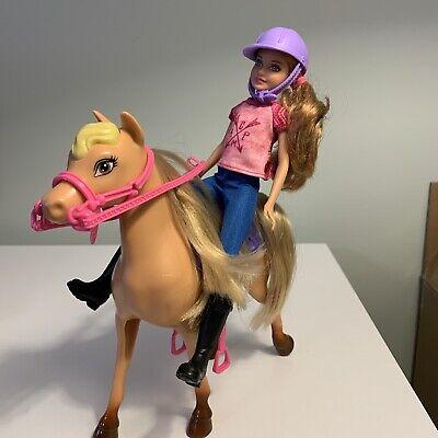 Mattel Barbie Camping Fun Stacie Doll & Horse Set