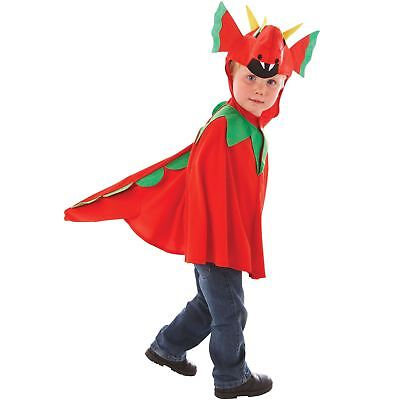 Boys 3-7 Years Red Dragon Cape Costume Welsh Fancy Dress Kids Book Week - Welsh Boy Kostüm