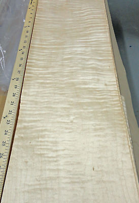 Curly Maple Figured Wood Veneer 9 X 36 Raw No Backing 142 Thickness Aa