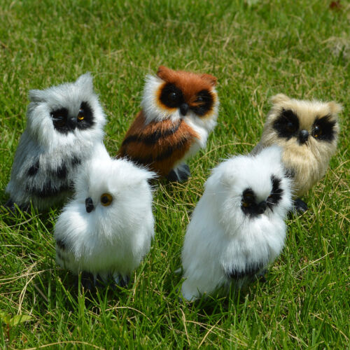 Set of 5 Realistic Mini Cute Night Owls Christmas Gift Kids Toy Furry Bird Model