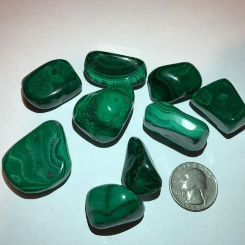 1/2 Pound Lot - Tumbled & Polished Natural Green MALACHITE Crystals - Very Nice