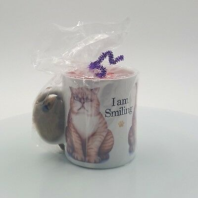 AAG for Peacock Papers Cat Mug Coffee Cup Gift Wrapped w Cat Toy Mouse & Candy