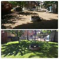 Spring Clean Up/Lawn & Garden Maintenance/Shrub and Tree Removal