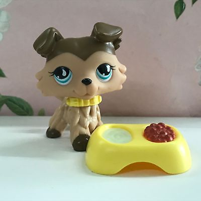 LPS COLLECTION LITTLES PET SHOP Brown Collie dog RARE TOY 2'' #893