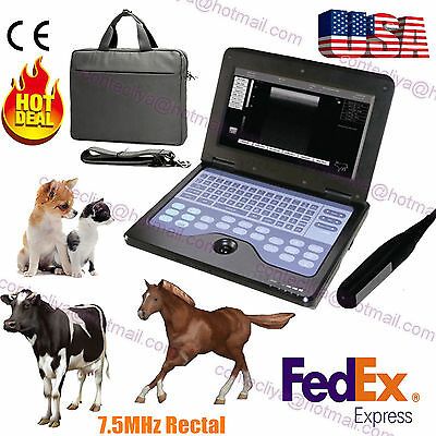 Veterinary Vet Portable Ultrasound Scanner Machine For Cowhorseanimalrectal