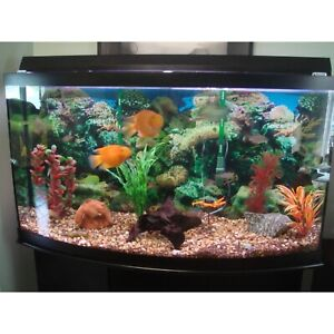 80 gallons aquarium  $550 or obo