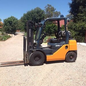 Toyota Forklift The Vines Swan Area Preview