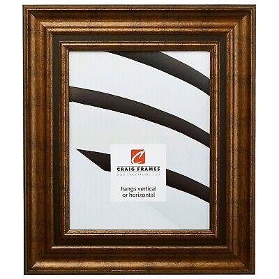 Ages Framed (Craig Frames Appennine Classic, Aged Gold and Bronze Picture Frame )