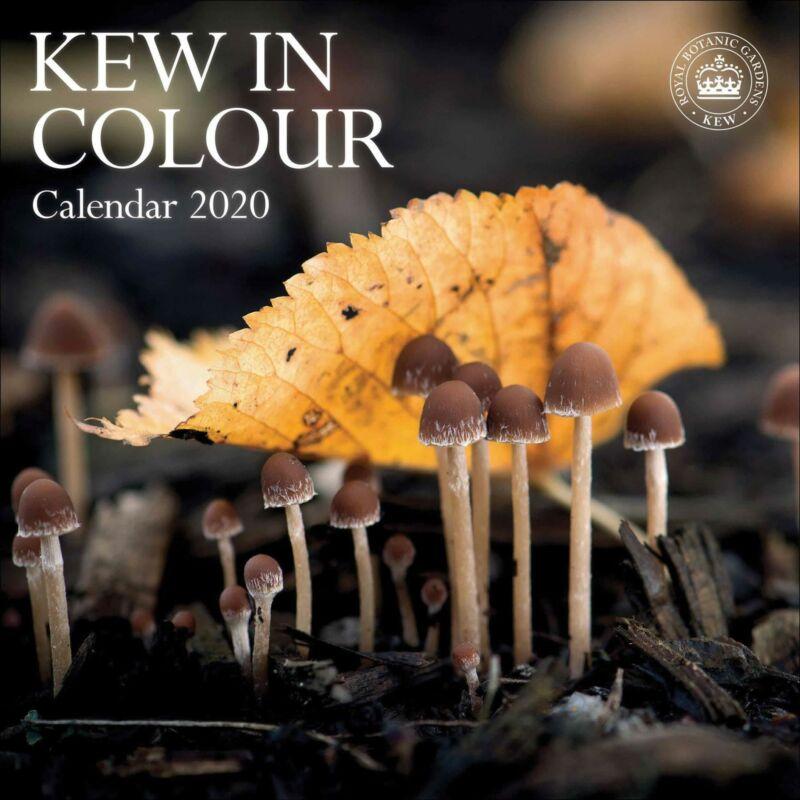 Kew+in+Colour+Royal+Botanic+Gardens+2020+Official+Square+Wall+Calendar