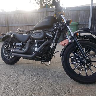 2013 Harley Davidson Iron 883 sportster