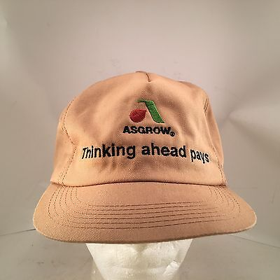 Asgrow Seed Thinking Ahead Pays Winter Ear Flap Farmer Hat Made In Usa Monsanto