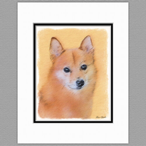 Finnish Spitz Original Art Print 8x10 Matted to 11x14