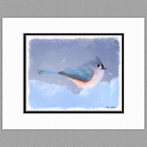 Tufted Titmouse Wild Bird Original Art Print 8x10 Matted to 11x14