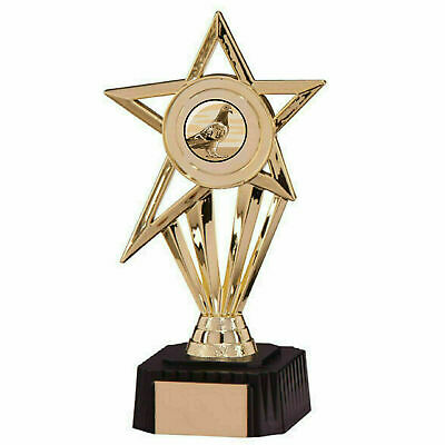 Pigeon Racing Award High Star Gold Sports Trophy (A) ENGRAVED FREE