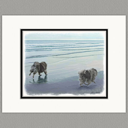 Keeshond at Seashore Original Art Print 8x10 Matted to 11x14