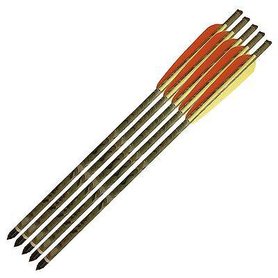 5 Frecce Freccia Mimetica 16