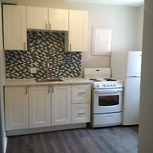 Professionally Renovated | Spacious 1 Bed | Steps to Gage Park