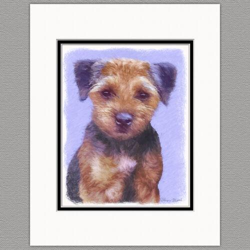Border Terrier Dog Original Art Print 8x10 Matted to 11x14