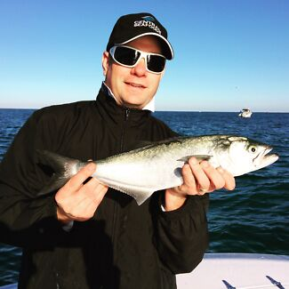BULK BAIT want to catch tailor like this? Malaga Swan Area Preview