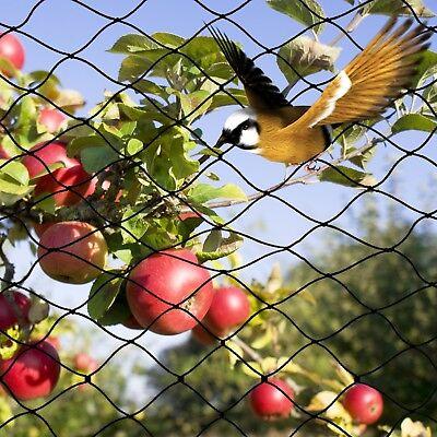 28X28'Bird Netting Tree&Vegetable Protective Bird Net Poultry Garden Aviary Mesh